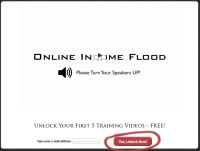 Online Income Flood